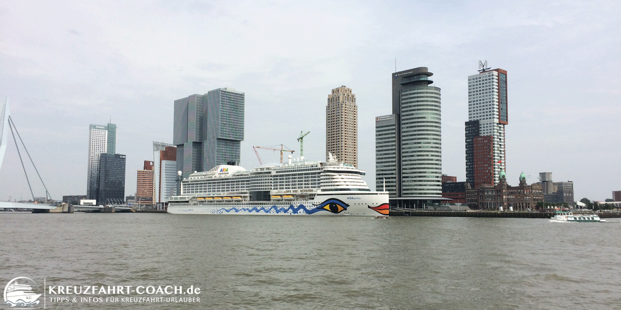 Rotterdam auf eigene Faust