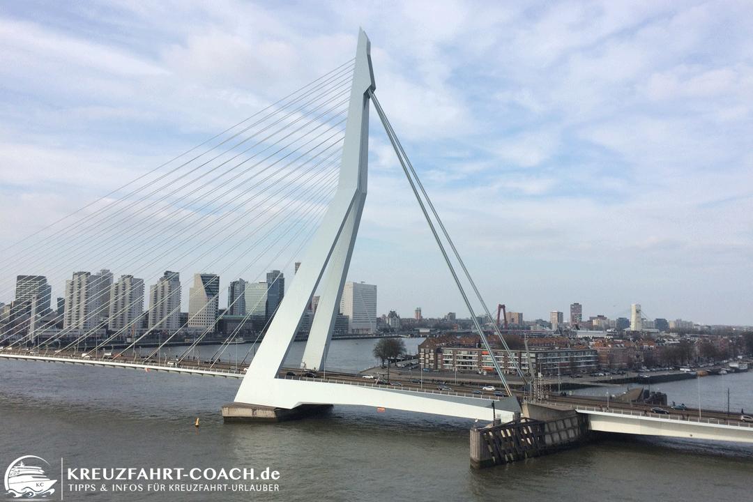 Rotterdam auf eigene Faust - Die Erasmusbrücke