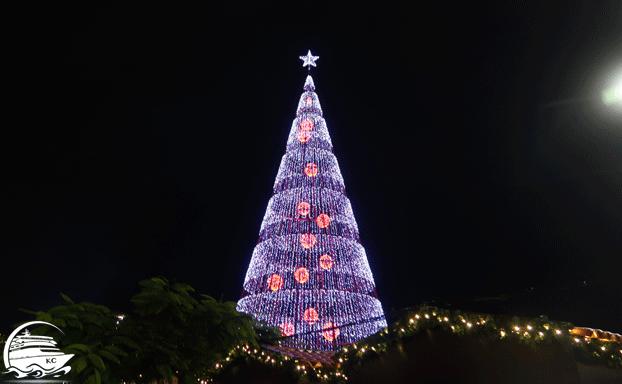 Winterurlaub - Weihnachtsmarkt auf Madeira