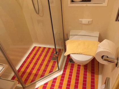 Blick auf Dusche und WC